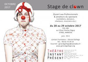 Stage de clown de théâtre en octobre 2017 à Amboise