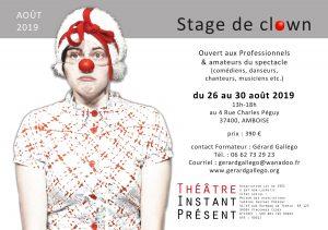 Stage de clown de théâtre du 26 au 30 août 2019 à Amboise